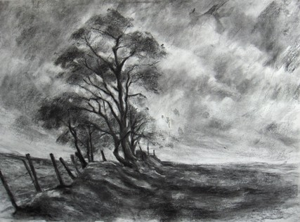 Charcoal Art Tree Windswept And Fence